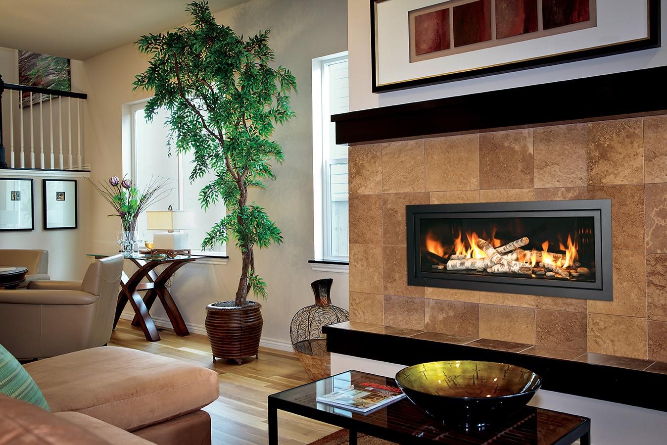 Discover The Mendota Fireplace Secret